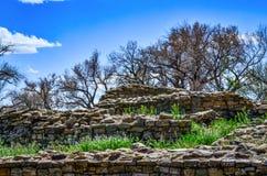 Antyczne ruiny Pod niebieskim niebem z Nagimi gałąź i chmurami Zdjęcie Royalty Free