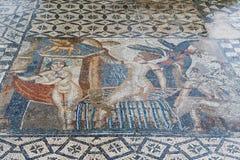 Antyczne rzymskie Volubils ruiny, mozaiki i zdjęcie stock