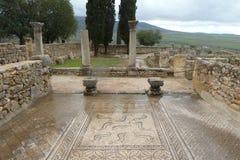 Antyczne rzymskie Volubils ruiny, mozaiki i fotografia stock