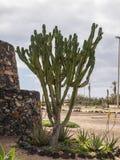 Antyczne schronienie fortyfikacje, Fuerteventura Obrazy Stock