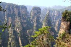 Antyczne Zhangjiajie góry. Zdjęcie Royalty Free