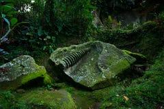 Antycznej świątyni ruiny Obraz Stock