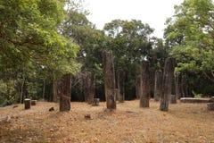 Antycznej świątyni ruiny Sabashalawa przy Sigiriya w Sri Lanka Obrazy Stock