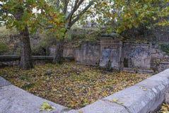 Antyczni źródło wody kamienia kolorów żółtych drzewa obrazy stock