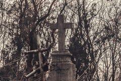 Antyczni cmentarniani nagrobków zabytki anioła mistycyzmu tajemnicy ducha duchy przynoszą śmierć zdjęcia royalty free