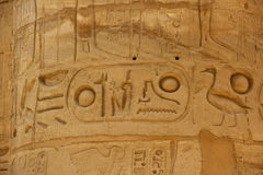 Antyczni Egipscy hieroglify rzeźbiący na kamieniu Imię Pharaoh w kartuszu Obraz Stock