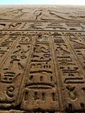 Antyczni symboli/lów hieroglyphics zdjęcia royalty free