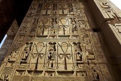 Antyczni symboli/lów hieroglyphics obrazy stock