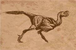 Antyczni zwierzęta Zdjęcia Stock