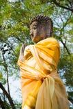Antyczny Buddha, Ayutthaya, Tajlandia Obrazy Stock
