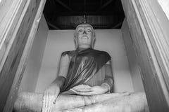 Antyczny Buddha nad 500 rok w Ayutthaya Fotografia Royalty Free