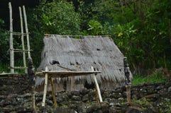 Antyczny budynek mieszkalny Rodzimi hawajczycy obraz stock