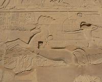 antyczny egipski pismo fotografia royalty free