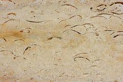 antyczny granit Zdjęcia Stock