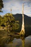 antyczny jezioro Zdjęcie Stock