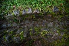 Antyczny kamienny drenaż z trawą obraz stock