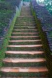 Antyczny kamienny schody w Sigiriya Sri Lanka Zdjęcia Stock