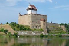 Antyczny kasztel Herman na pogodnym Sierpniowym dniu Narva, Estonia Obrazy Royalty Free