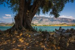 Antyczny miasteczko Butrint, Buthrotum - turystyczny przyciąganie w Albania zdjęcia royalty free
