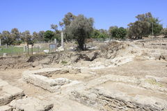 Antyczny miasto Biblijny Ashkelon w Izrael zdjęcia royalty free