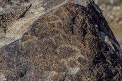 Antyczny miejsce z dziejowymi petroglifami w Kirgistan obraz stock