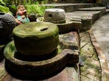 Antyczny millstone zielonego liszaju i Antycznego millstone wokoło Zdjęcie Royalty Free