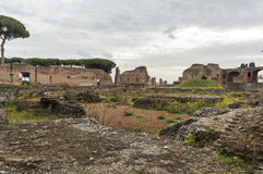 Antyczny Rzym, palatino Zdjęcia Stock