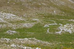 Antyczny sheepfold obrazy stock
