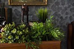 Antyczny stół z książkami i zieloną sztuczną trawą w pudełkach Zdjęcie Stock