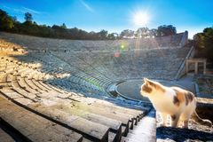 Antyczny teatr Epidaurus lub ` Epidavros `, Argolida prefektura, Grecja zdjęcia royalty free