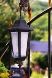 Antyka lampion w sieci zdjęcie royalty free