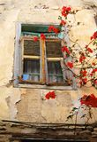 Antykwarska okno pogoda Będąca ubranym z Czerwonym kwiatem zdjęcie royalty free