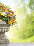 Antykwarska waza z kwiatami w ogródzie obrazy royalty free