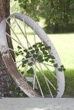 Antykwarski ciągnikowy koło, winograd i drzewo, Obrazy Stock