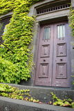 Antykwarski Drzwiowy wejście Obrazy Royalty Free
