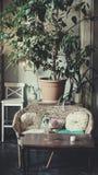 Antykwarski klasyczny wnętrze, krzesła, stół - miękki światło dzienne Obrazy Royalty Free