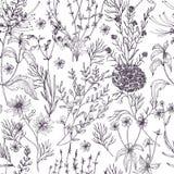 Antykwarski kwiecisty bezszwowy wzór z dzikimi kwiatami, kwiatonośni ziele i zielne rośliny, wręczamy patroszonego w czarny i bia Obrazy Stock