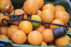 Antykwarski Romański bezmian lub rzymianin równowaga w pudełku z pomarańczami w rynku, Fotografia Stock
