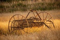 Antykwarski siano świntuch w rolnika polu podczas złotego zmierzchu zdjęcie royalty free