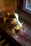 antykwarski złoty wnętrze złoci pary buty Obrazy Stock