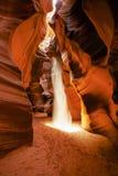 Antylopa jar Arizona - strona - zdjęcia royalty free