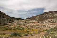 Antylopa maczka Dolinna rezerwa, Kalifornia, usa zdjęcia stock