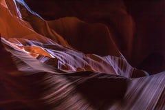 antylopy Arizona jar zdjęcia royalty free