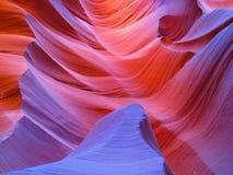 antylopy Arizona jar Zdjęcie Stock