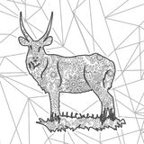 Antylopy doodle Paisley stresu uwolnienia kolorystyki strony ręka rysujący zwierzęcy dorosły zentangle Obraz Stock