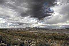 Antylopy wyspa, stanu park, Wielki Salt Lake w zimie USA, Utah obrazy stock