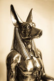 Anubis Royalty Free Stock Images