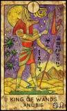anubis Roi des baguettes magiques Illustration Libre de Droits