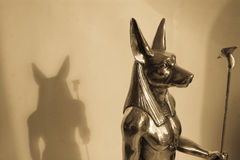 Anubis and shadow Stock Image