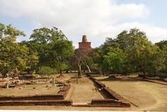 Anuradhapura,斯里南卡 免版税库存图片